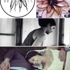 B & B Spotlight: Wild Roots