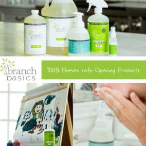 Spotlight on B&B: Branch Basics