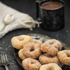 Cinnamon Sugar Donuts {Beard and Bonnet} #glutenfree