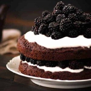 Naked Chocolate Cake with Blackberries and Whipped Coconut Cream {Beard and Bonnet} #InTheRaw #glutenfree #vegan