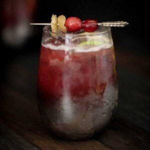 Cranberry Ginger Moscow Mule {Beard and Bonnet}