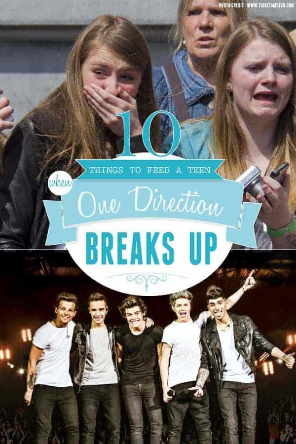 10 Recipes To Make A Teen When One Direction Breaks Up { www.thismessisours.com } @beardandbonnet