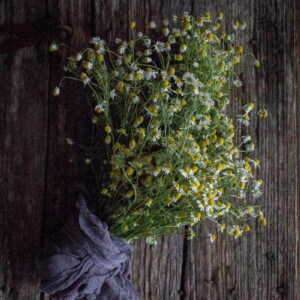 5 Delicious Ways to Indulge with Fresh Chamomile by @vigorandsage & @beardandbonnet onwww.beardandbonnet.com