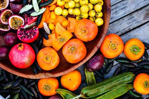 A bowl of exotic fruits at Good Land Organics farm. pomegranate, persimmon, ice cream bean, passion fruit, and finger limes.