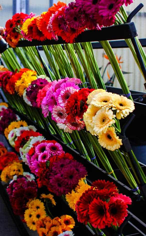 A stand of cut flowers filled with Gerbera daisies