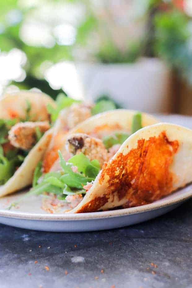 A plate of Crunchy Gluten Free Avocado Taco's that shows their Crispy Cheese Frico-dilla