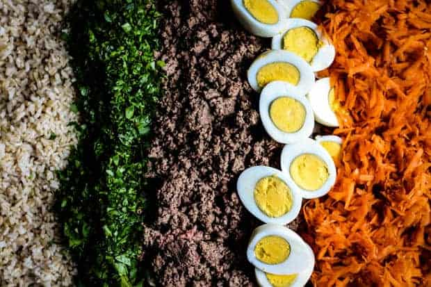 A close up of the ingredients needed to make homemade dog food. Ground beef, brown rice, shredded carrot, hard boiled egg, parsley