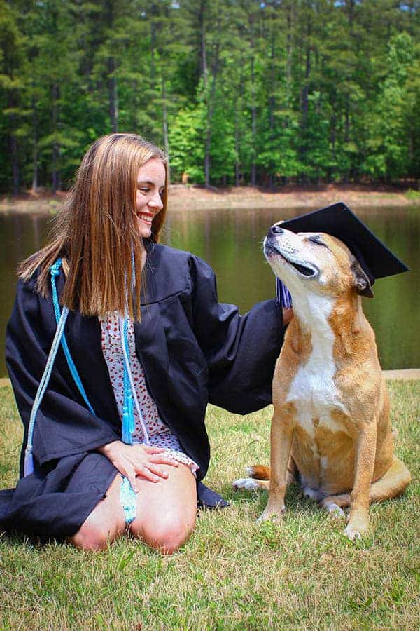 A dog sitting on the lawn next to a high school graduate in her cap and gown. The girl is placing her graduation cap on teh dogs head and he is happy.