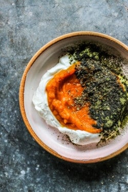 Pumpkin and Yogurt Bowl for Dogs