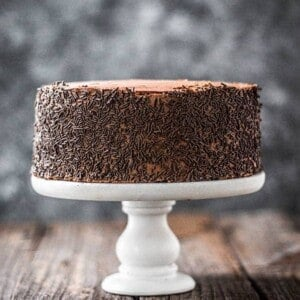 A 2-layer, iced version of our Easy Chocolate Cake recipe. It is frosted with chocolate icing and the sides are coated in chocolate sprinkles.