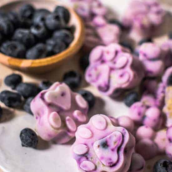 Can Dogs Eat Blueberries? The Ultimate Canine Superfood
