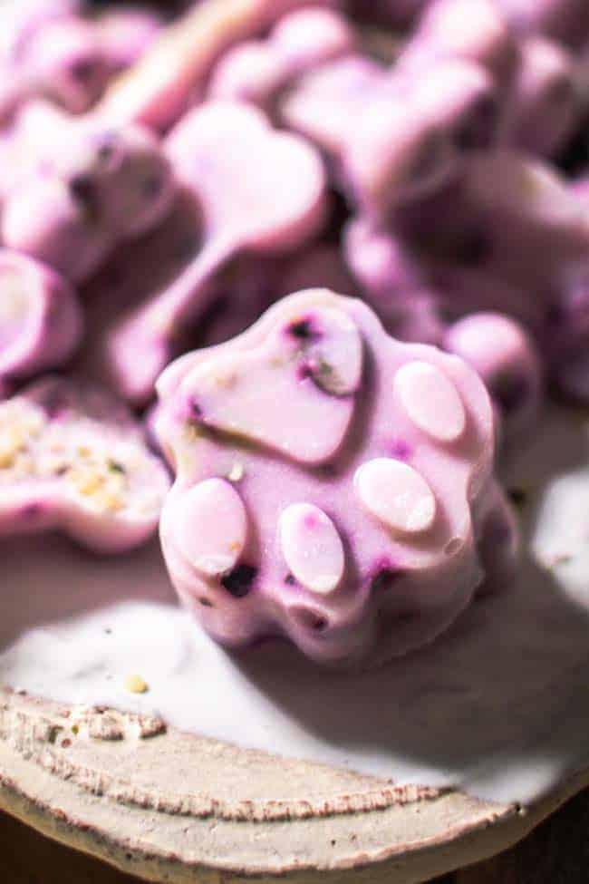 blueberry yogurt treat close-up